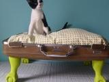 Дом для кошки из чемодана
