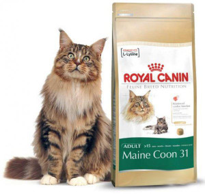 Royal Canin корм для мейн куна