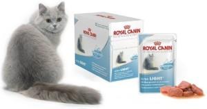 Ветеринарная линейка Роял Канин