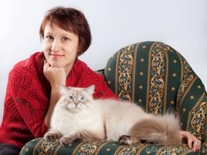 Отзывы владельцев о наполнителях для кошек