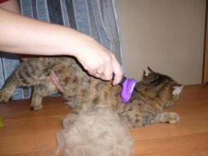Расческа для кошки