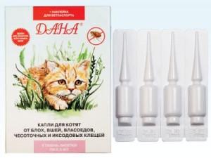 Лечение кошки от власоедов