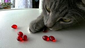 Витамин A для кошек