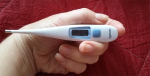 Измеряем температуру кошке