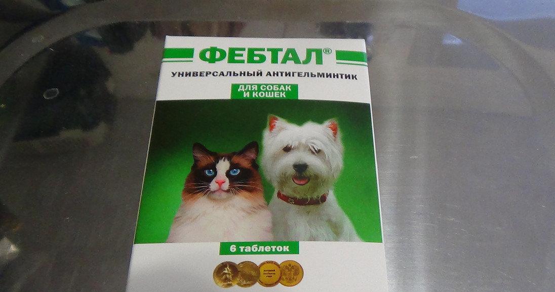 Фебтал для кошек