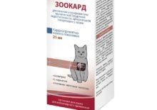 Зоокард для кошек