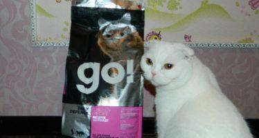 Гоу корм для кошек