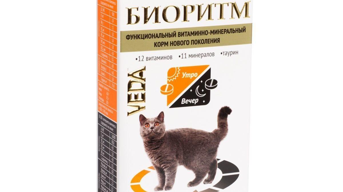Биоритм для кошек